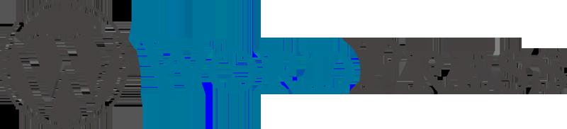 800px-WordPress_logo
