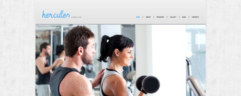 Szablon WordPress – 47540